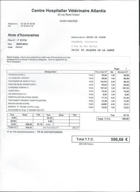 modele facture asso loi 1901