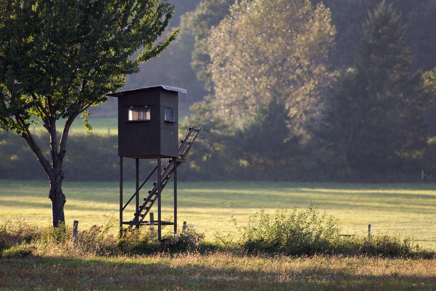 Photos Lumix du 6 Octobre 2012 _1110331-387fe9f